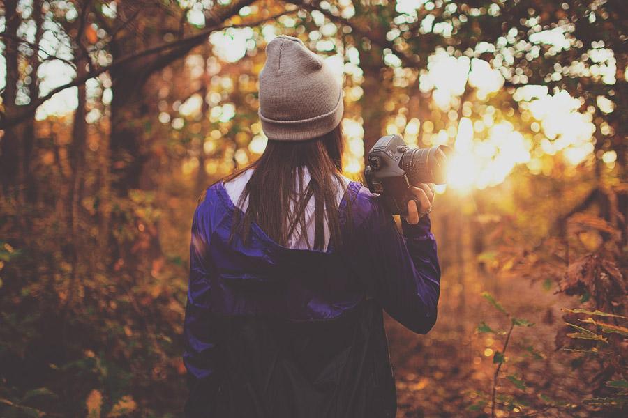 フリー写真 森の中でカメラを持って夕日を眺める女性の後ろ姿