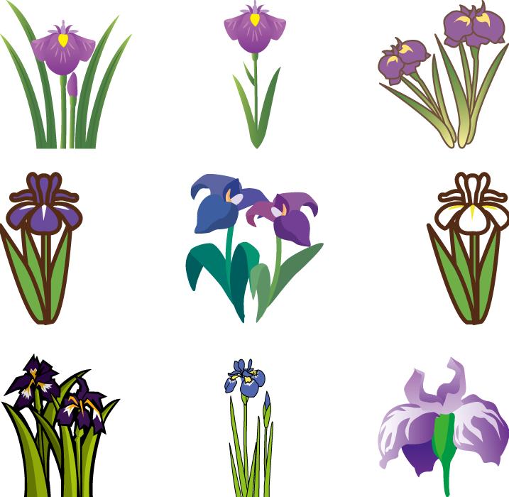 フリーイラスト 9種類の菖蒲の花のセット