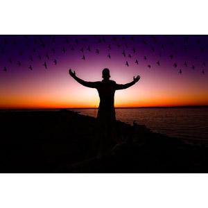 フリー写真, 人と風景, シルエット(人物), 手を広げる, 歓喜, 鳥(トリ), 群れ, 夕暮れ(夕方), 夕焼け