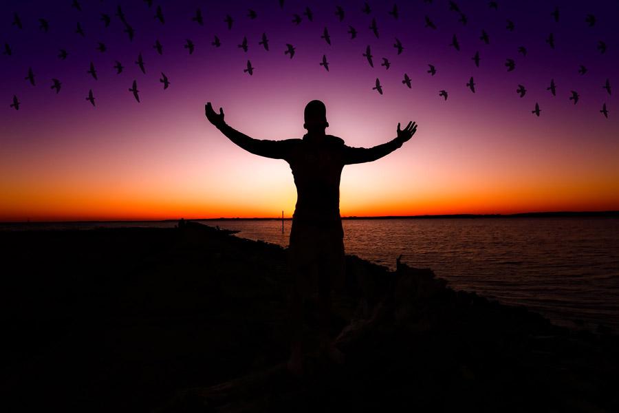 フリー写真 夕陽と鳥の群れと歓喜する人物のシルエット