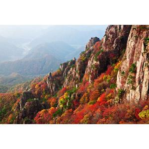フリー写真, 風景, 自然, 山, 岩山, 紅葉(黄葉), 秋