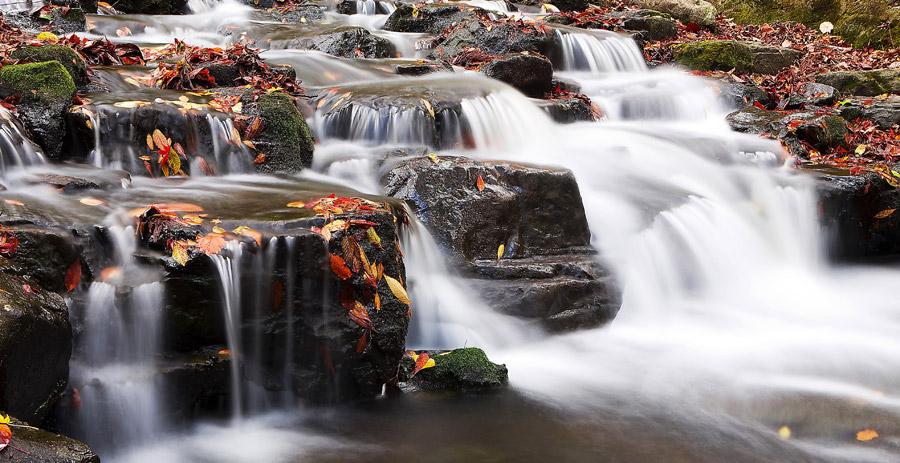 フリー写真 落ち葉と渓流の風景