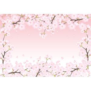 フリーイラスト, ベクター画像, AI, 背景, フレーム, 囲みフレーム, 植物, 花, 桜(サクラ), ピンク色の花, ピンク色, 春, 花びら, 桜吹雪