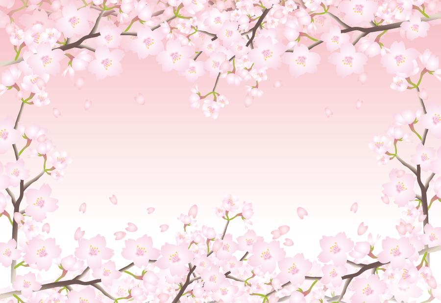 フリーイラスト 満開の桜の花の飾り枠
