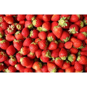 フリー写真, 食べ物(食料), 果物(フルーツ), 苺(イチゴ), 赤色(レッド)