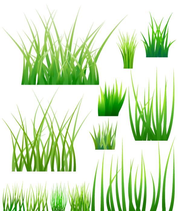 フリーイラスト 12種類の草のセット