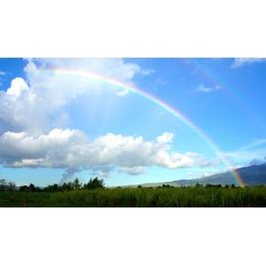 フリー写真, 風景, 自然, 虹, 青空, 雲, 草むら