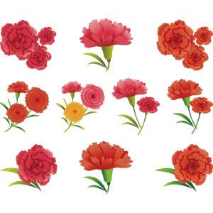 フリーイラスト, ベクター画像, AI, 植物, 花, カーネーション, 年中行事, 母の日, 5月