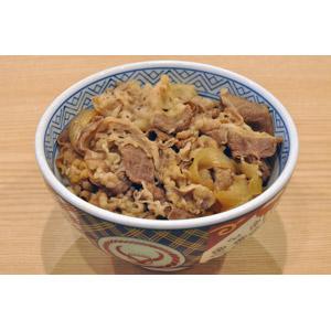 フリー写真, 食べ物(食料), 料理, 丼物, 牛丼, 肉料理, 牛肉料理