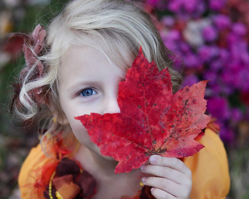 フリー写真 楓の葉で顔を隠す外国の女の子