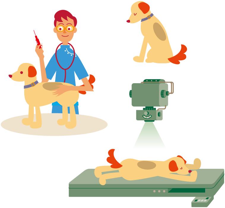 フリーイラスト 犬の健康診断のセット