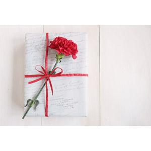 フリー写真, 年中行事, 母の日, 花, カーネーション, 赤色の花, プレゼント, 5月