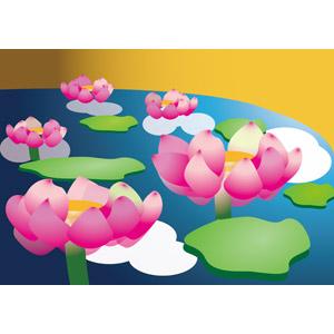 フリーイラスト, ベクター画像, EPS, 植物, 花, 蓮(ハス), ピンク色の花, 池