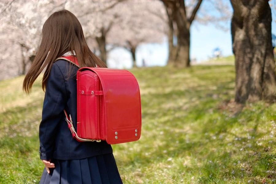 フリー写真 ランドセルを背負う小学生と桜並木