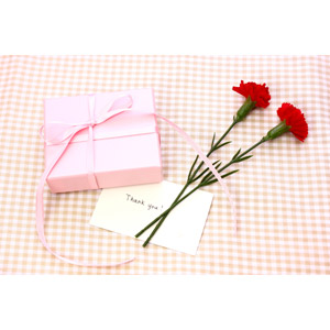 フリー写真, 年中行事, 母の日, 5月, カーネーション, プレゼント, メッセージカード, ありがとう