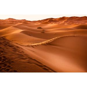 フリー写真, 風景, 自然, 砂漠, 砂丘, サハラ砂漠, モロッコの風景