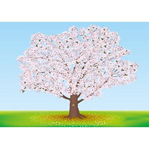 フリーイラスト, ベクター画像, AI, 風景, 自然, 樹木, 花, 桜(サクラ), 春