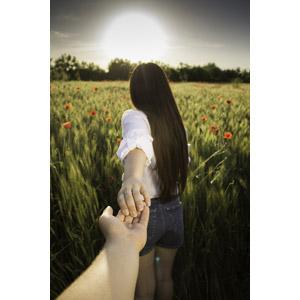 フリー写真, 人物, カップル, 恋人, 手を引く, 後ろ姿, 人と風景, 畑, 麦(ムギ), ヒナゲシ(ポピー), 二人, 手, 太陽光(日光)