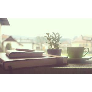 フリー写真, 風景, 日記帳, 手帳, ボールペン, 観葉植物, コーヒーカップ, 朝