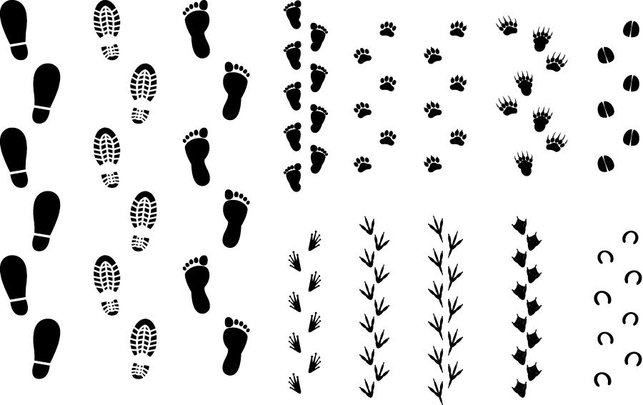 フリーイラスト 13種類の人間と動物の足跡のセット