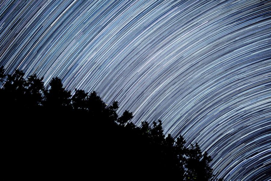 フリー写真 星の軌跡と木々のシルエット