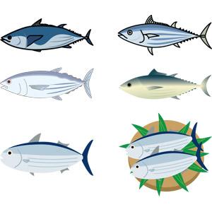 フリーイラスト, ベクター画像, AI, 動物, 魚類, 魚(サカナ), 鰹(カツオ), 食べ物(食料), 魚介類
