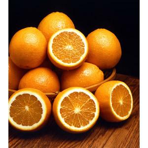 フリー写真, 食べ物(食料), 果物(フルーツ), オレンジ