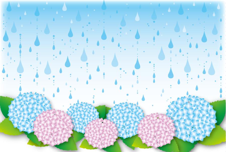 フリーイラスト 雨とあじさいの花の背景