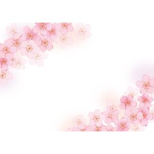 フリーイラスト, ベクター画像, AI, 背景, フレーム, 対角フレーム, 植物, 花, 桜(サクラ), ピンク色の花, 春