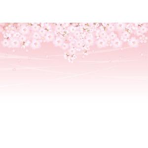 フリーイラスト, ベクター画像, AI, 背景, 植物, 花, 桜(サクラ), 花びら, ピンク色の花, 春, ピンク色