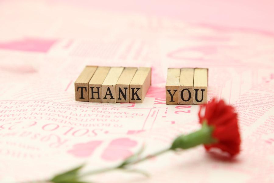 フリー写真 「THANK YOU」とカーネーションの花