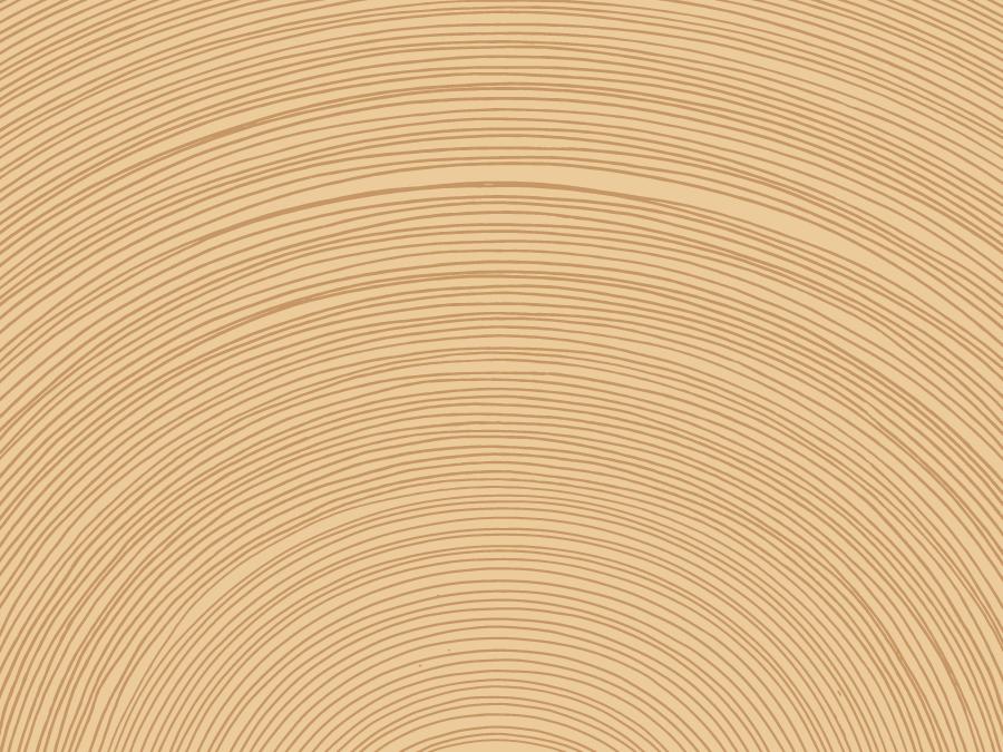 フリーイラスト 年輪の背景