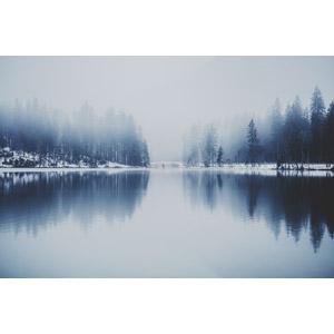 フリー写真, 風景, 自然, 湖, 霧(霞), 雪, ドイツの風景