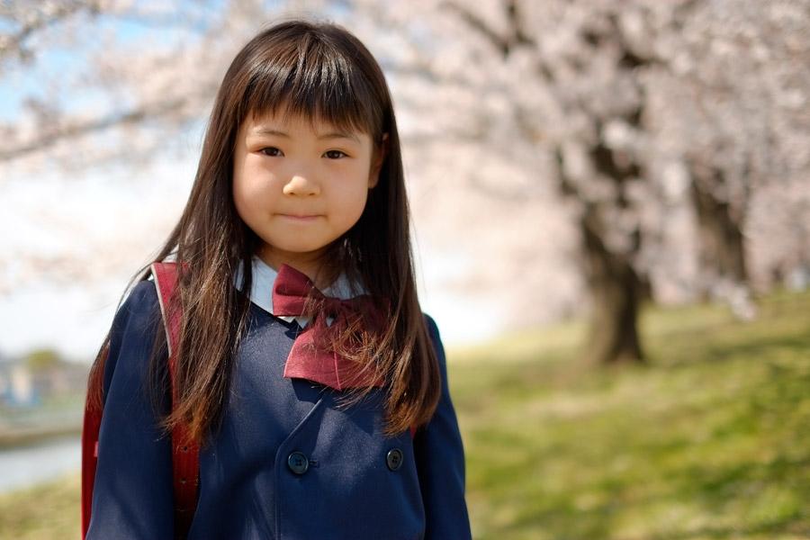 フリー写真 桜と新入学を迎える小学生の女の子