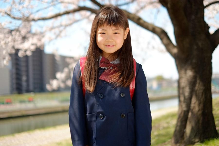 フリー写真 さくらの木と新学期を迎える小学生の女の子