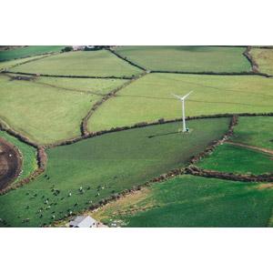 フリー写真, 風景, 牧場, 牧草地, 機械, 風力発電機, 再生可能エネルギー, 発電, 牛(ウシ), イギリスの風景, イングランド, 田舎
