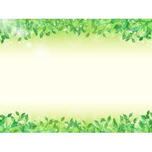 フリーイラスト, ベクター画像, AI, 背景, フレーム, 上下フレーム, 植物, 葉っぱ, 新緑