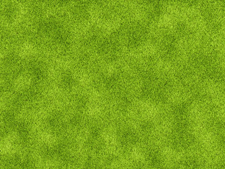 フリー写真 真上から見た芝生
