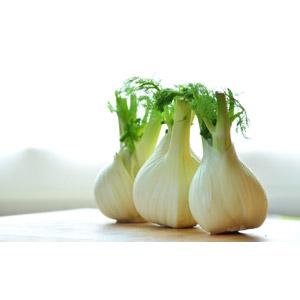 フリー写真, 食べ物(食料), 野菜, フェンネル