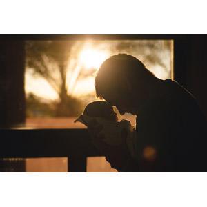 フリー写真, 人物, 親子, 父親(お父さん), 子供, 赤ちゃん, おでこをつける, 二人, 人と風景, 夕暮れ(夕方), 夕日