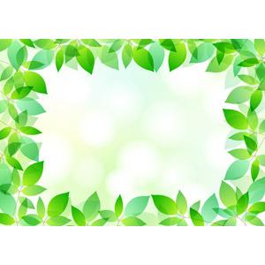 フリーイラスト, ベクター画像, AI, 背景, フレーム, 囲みフレーム, 植物, 葉っぱ, 新緑, 緑色(グリーン)