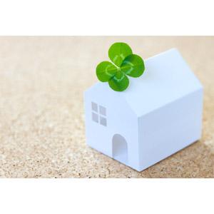 フリー写真, 家(一軒家), 家(模型), 植物, クローバー(シロツメクサ), 四つ葉のクローバー