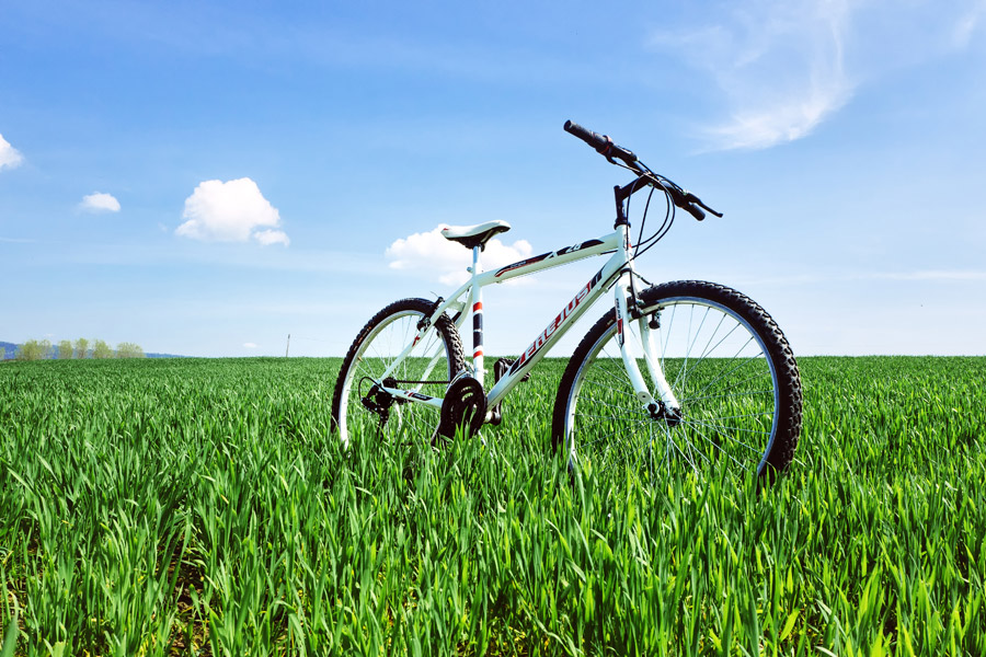 フリー写真 牧草地に置かれたマウンテンバイク