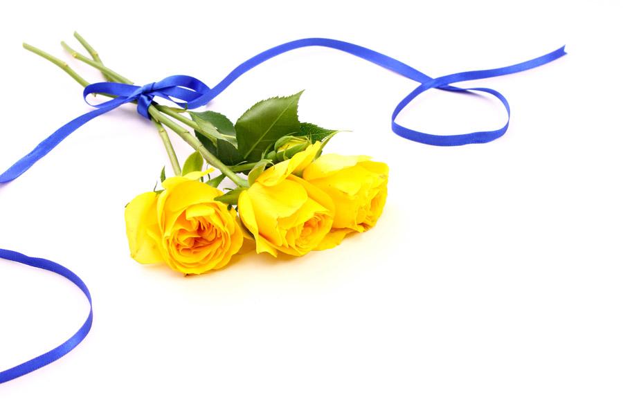フリー写真 黄色のバラの花束