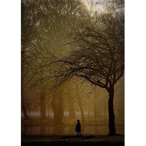 フリー写真, 風景, 人と風景, 子供, 女の子, 後ろ姿, 公園, 朝, 樹木, 池, 霧(霞)