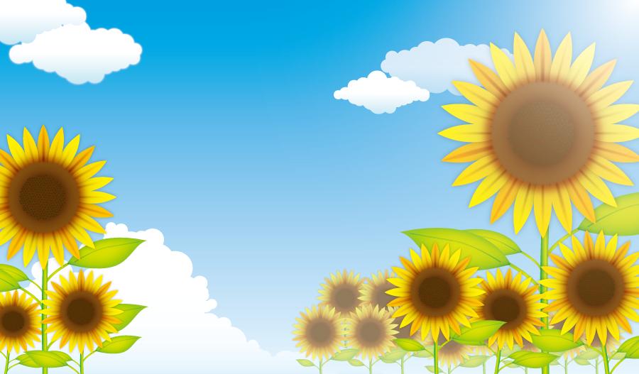 フリーイラスト 夏の空とヒマワリの花