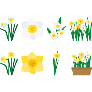 フリーイラスト, ベクター画像, AI, 植物, 花, 水仙(スイセン)