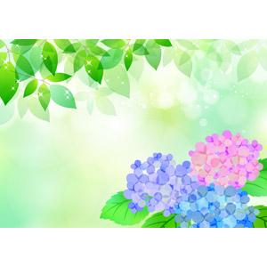 フリーイラスト, ベクター画像, AI, 背景, 植物, 葉っぱ, 新緑, 花, 紫陽花(アジサイ)