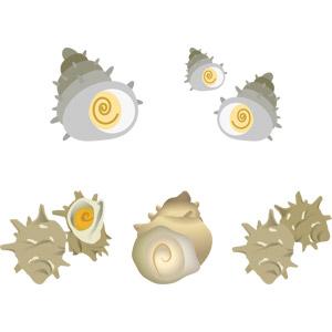 フリーイラスト, ベクター画像, AI, 食べ物(食料), 魚介類, 貝類, 食用貝, サザエ, 動物