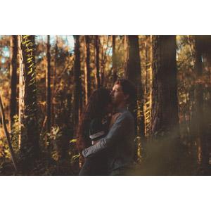 フリー写真, 人物, カップル, 恋人, ブラジル人, 抱き合う, 人と風景, 森林, 樹木